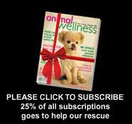 All purchases made from this link support our rescue, including subscriptions!